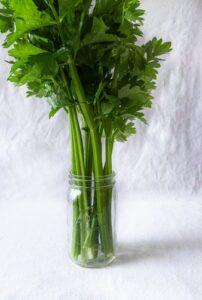 sticks of celery in glass